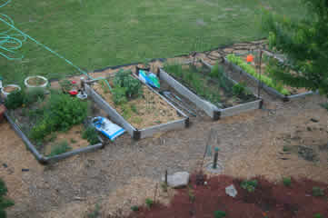 looking down at raised beds