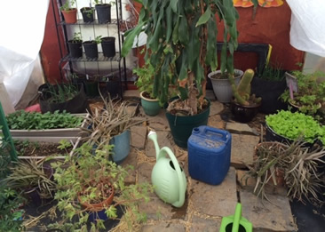 American Indian Health - Raised Bed Gardens on